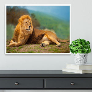 Lion male having a rest Framed Print - Canvas Art Rocks -6