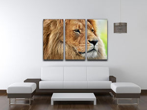 Lion portrait on savanna 3 Split Panel Canvas Print - Canvas Art Rocks - 3