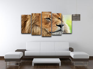 Lion portrait on savanna 5 Split Panel Canvas - Canvas Art Rocks - 3