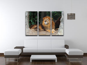 Lion resting on a tree 3 Split Panel Canvas Print - Canvas Art Rocks - 3