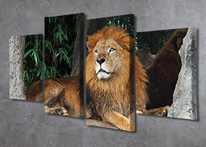 Lion resting on a tree 4 Split Panel Canvas - Canvas Art Rocks - 2