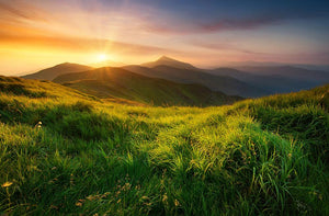 Mountain valley during sunrise Wall Mural Wallpaper - Canvas Art Rocks - 1