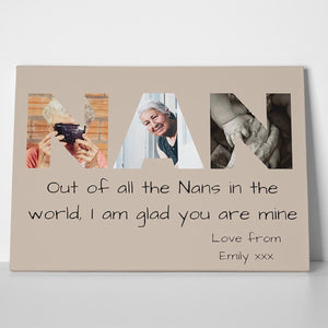 NAN Photo Canvas Print