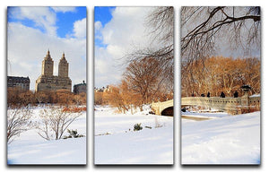 New York Manhattan Central Park panorama winter 3 Split Panel Canvas Print - Canvas Art Rocks - 1