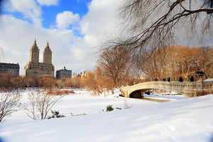 New York Manhattan Central Park panorama winter Wall Mural Wallpaper - Canvas Art Rocks - 1