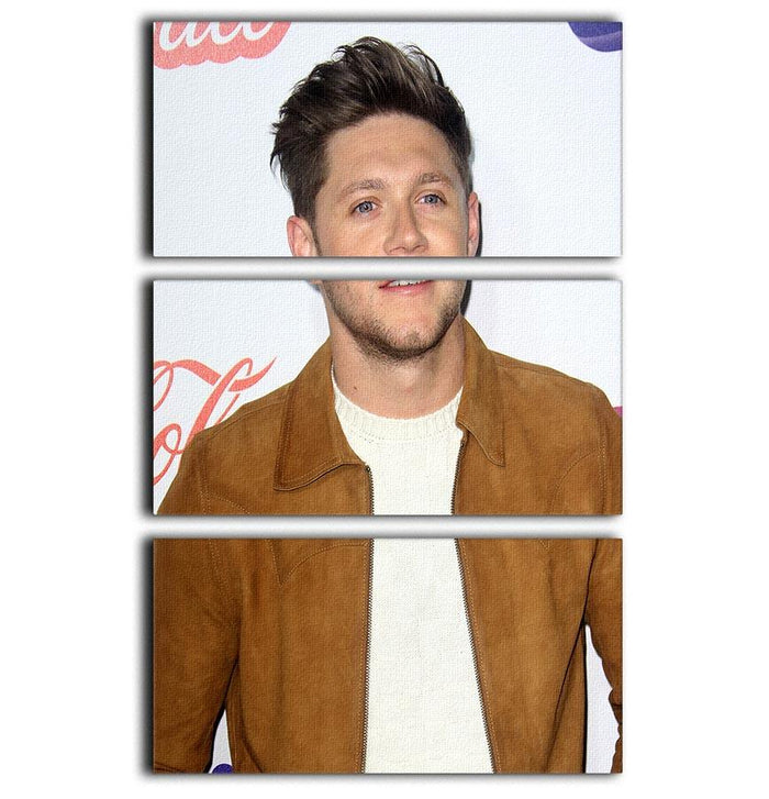 Niall Horan of One Direction 3 Split Panel Canvas Print
