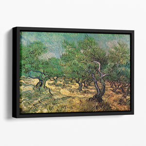 Olive Grove 2 by Van Gogh Floating Framed Canvas