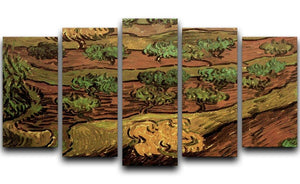 Olive Trees against a Slope of a Hill by Van Gogh 5 Split Panel Canvas  - Canvas Art Rocks - 1