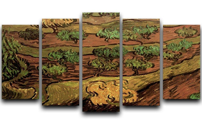 Olive Trees against a Slope of a Hill by Van Gogh 5 Split Panel Canvas
