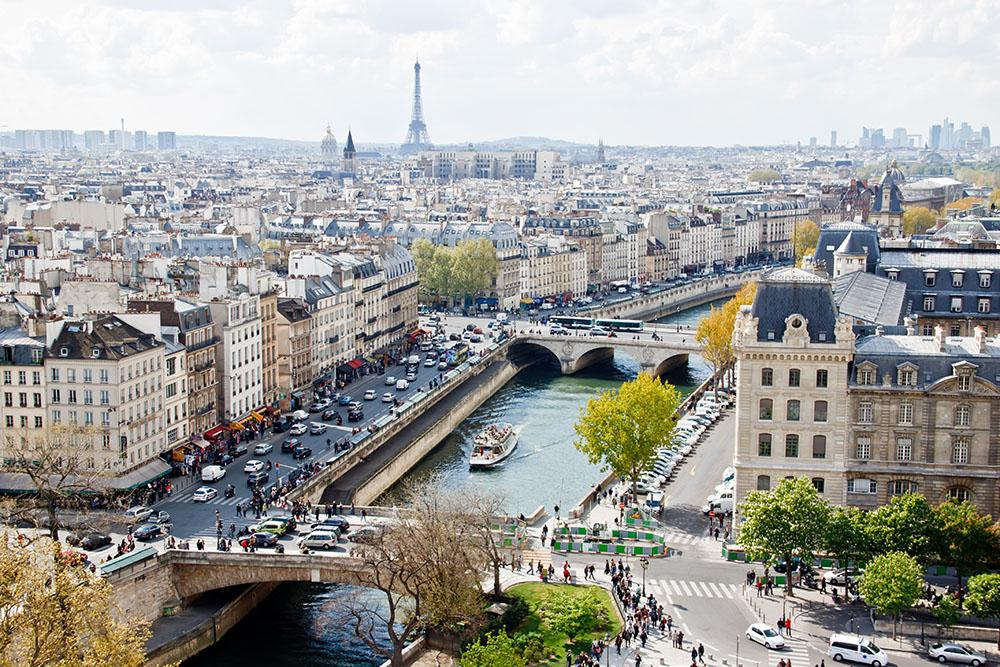 Paris skyline from the top of Notre Dame Wall Mural Wallpaper
