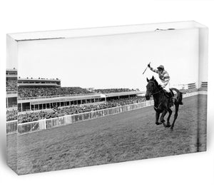 Party Politics romps home in the Grand National Acrylic Block - Canvas Art Rocks - 1