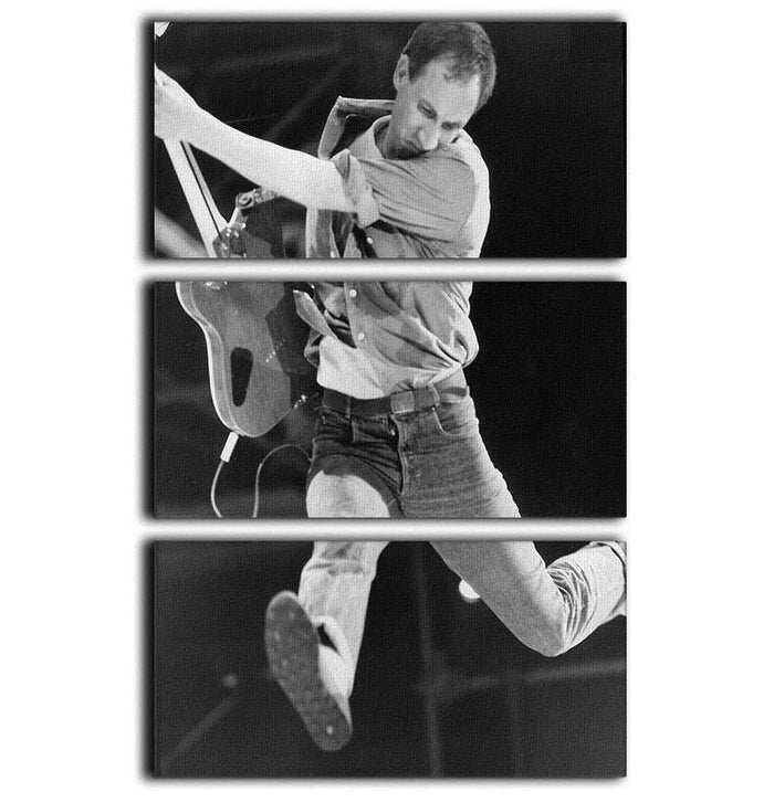 Pete Townshend of The Who 3 Split Panel Canvas Print