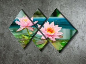 Pink Lotus or water lily in pond 4 Square Multi Panel Canvas  - Canvas Art Rocks - 2