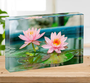 Pink Lotus or water lily in pond Acrylic Block - Canvas Art Rocks - 2