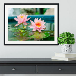 Pink Lotus or water lily in pond Framed Print - Canvas Art Rocks - 1