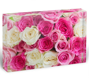 Pink and white fresh rose flowers Acrylic Block - Canvas Art Rocks - 1