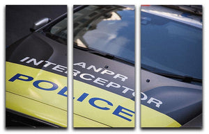 Police car 3 Split Panel Canvas Print - Canvas Art Rocks - 1