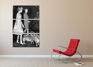 Prince Charles with Princess Anne as children with pet dogs 3 Split Panel Canvas Print - Canvas Art Rocks - 2