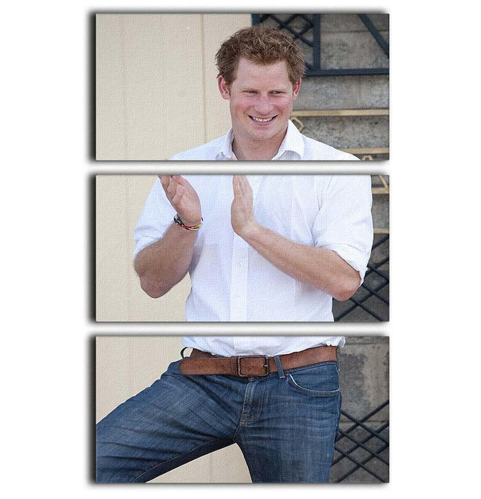 Prince Harry at a blind clinic in Lesotho South Africa 3 Split Panel Canvas Print