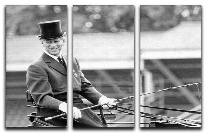 Prince Philip driving a carriage during a race at Ascot 3 Split Panel Canvas Print