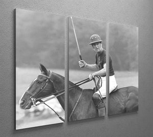 Prince Philip shown winning the polo Gold Cup 3 Split Panel Canvas Print - Canvas Art Rocks - 2