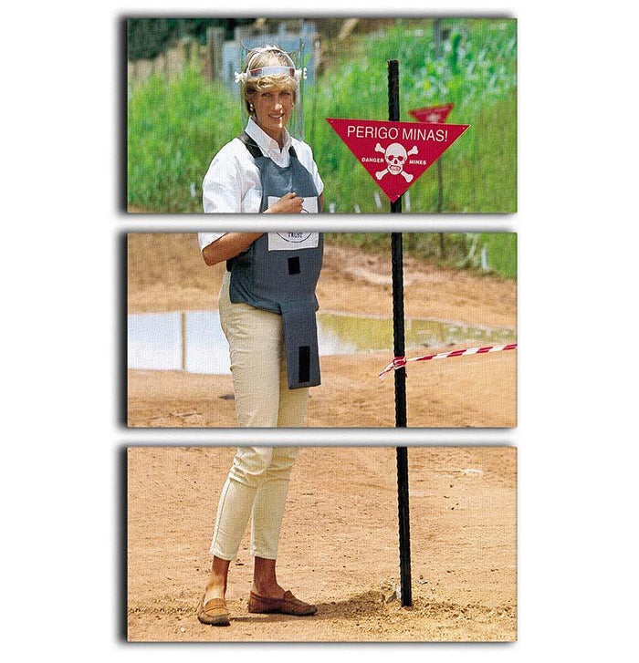 Princes Diana at a mine field in Angola for a Red Cross visit 3 Split Panel Canvas Print
