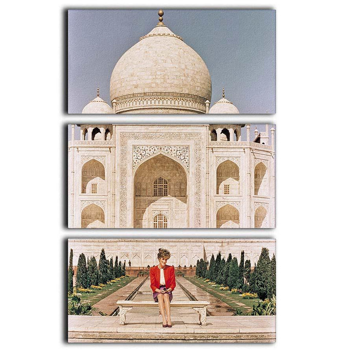 Princess Diana at the Taj Mahal in India 3 Split Panel Canvas Print