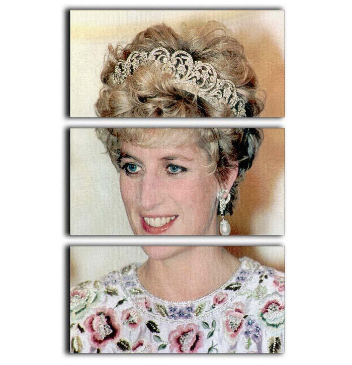 Princess Diana in a tiara at a dinner in Seoul South Korea 3 Split Panel Canvas Print