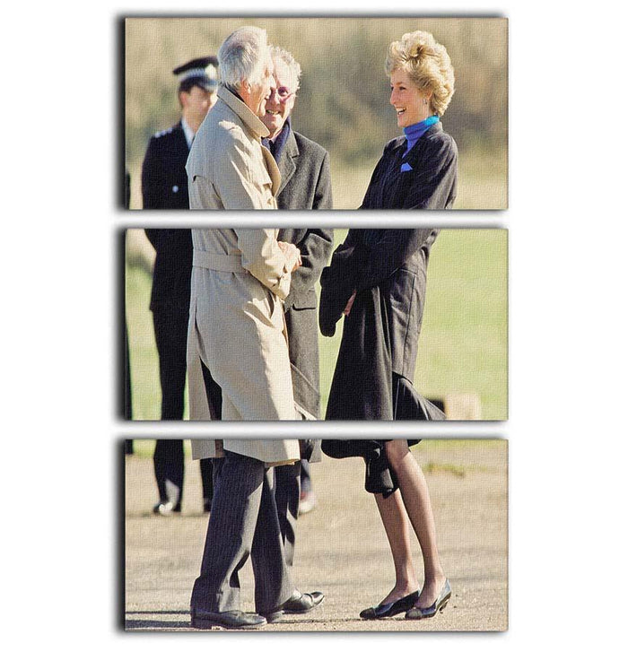 Princess Diana laughing 3 Split Panel Canvas Print
