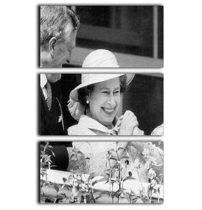 Queen Elizabeth II charmed at the Epsom Derby 3 Split Panel Canvas Print