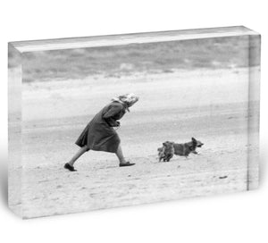 Queen Elizabeth II walking her pet corgis on a Norfolk beach Acrylic Block - Canvas Art Rocks - 1