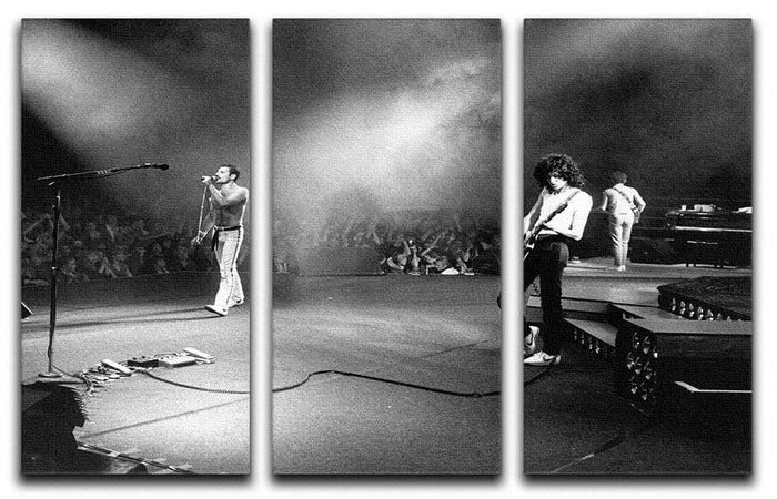 Queen Live 3 Split Panel Canvas Print