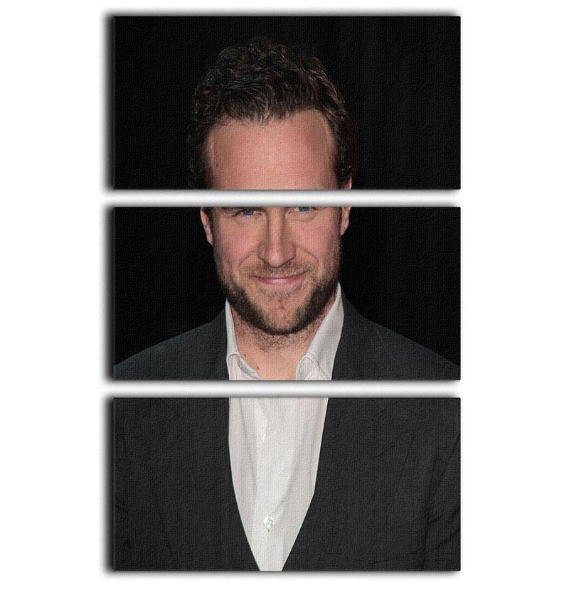Rafe Spall 3 Split Panel Canvas Print - Canvas Art Rocks - 1
