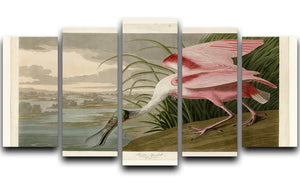 Roseate Spoonbill by Audubon 5 Split Panel Canvas - Canvas Art Rocks - 1