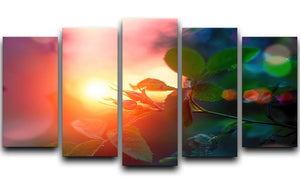 Rosebuds at sunset 5 Split Panel Canvas  - Canvas Art Rocks - 1
