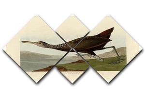 Scolopaceus Courlan by Audubon 4 Square Multi Panel Canvas - Canvas Art Rocks - 1