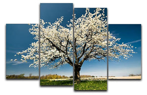 Single blossoming tree in spring 4 Split Panel Canvas  - Canvas Art Rocks - 1