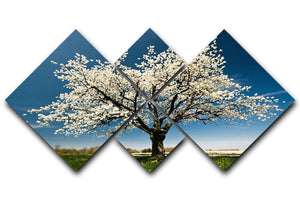Single blossoming tree in spring 4 Square Multi Panel Canvas  - Canvas Art Rocks - 1