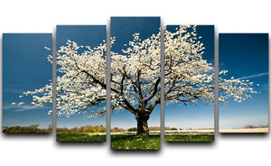 Single blossoming tree in spring 5 Split Panel Canvas  - Canvas Art Rocks - 1