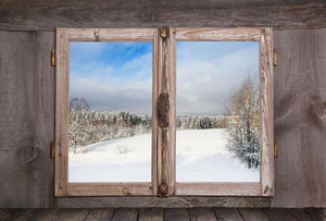 Snowy winter landscape in january Wall Mural Wallpaper - Canvas Art Rocks - 1