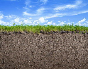 Soil ground Wall Mural Wallpaper - Canvas Art Rocks - 1