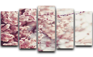 Spring Cherry blossoms 5 Split Panel Canvas  - Canvas Art Rocks - 1