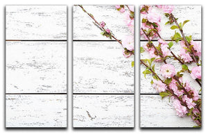 Spring flowering branch on white wooden 3 Split Panel Canvas Print - Canvas Art Rocks - 1