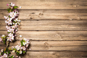 Spring flowering branch on wooden background Wall Mural Wallpaper - Canvas Art Rocks - 1
