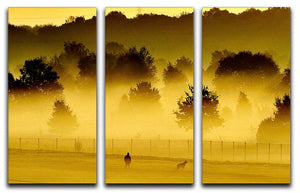 Sunrise and Mist 3 Split Panel Canvas Print - Canvas Art Rocks - 1