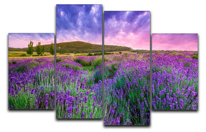 Sunset over a summer lavender field 4 Split Panel Canvas  - Canvas Art Rocks - 1