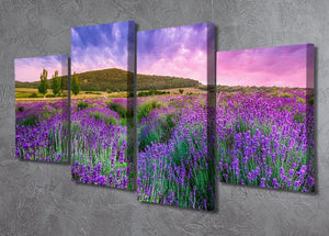 Sunset over a summer lavender field 4 Split Panel Canvas  - Canvas Art Rocks - 2