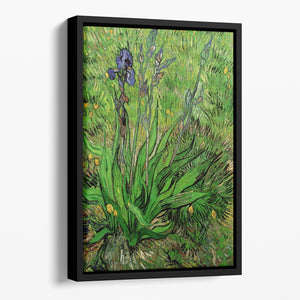 The Iris by Van Gogh Floating Framed Canvas
