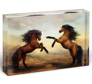 The Two Horses Acrylic Block - Canvas Art Rocks - 1
