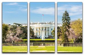 The White House Blossoms 3 Split Panel Canvas Print - Canvas Art Rocks - 1